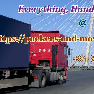 packers and movers delhi 4